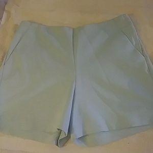 👓👓Shorts mint green